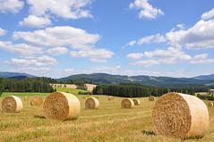 Gute Ernte (Mariandl48) Tags: erntezeit strohballen felder wiesen wald berge bume sommersgut wenigzell steiermark austria