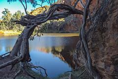 MacDonnell Ranges Ellery Creek Northern Territory-2-3