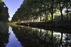 Hall; Apeldoornskanaal, Hallseweg (Fred van Daalen) Tags: hall apeldoornskanaal veluwe gelderland netherlands