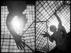 Against the Sun (Giorgio Verdiani) Tags: paris parigi france francia marble marmo museum museo louvre gallery exhibition exhibit mostra esposizione statue statua architecture architettura sun sole blackandwhite biancoenero film pellicola fujifilm neopan 400asa 400iso 24x36 pentax compactcamera compatta zoom espio 928 af