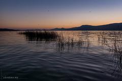 Lac de Neuchtel (Switzerland) (christian.rey) Tags: vernay fribourg suisse ch forel coucherdesoleil sunset lac neuchtel lacdeneuchtel tg4 olymppus stylus paysagae landscape switzerland lake