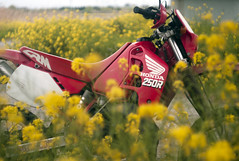 L1008451c (haru__q) Tags: leica m8 leitz summicron field mustard  honda crm250r motorcycle 2st