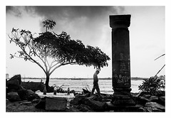 Life with Nature (Madhusudanan Parthasarathy) Tags: kochi kerala cochin fort fortkochi india incredibleindia mono blackandwhite madhusudananparthasarathy nikon d750 rocks nature tree shop human man monsson rain climate weather chennaiweekendclickers cwc