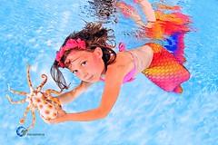 Meerjungfrauenschwimmen - Mermaid Schwimmkurse - Meerjungfrauen Schwimmen H2OFoto.de Unterwasserfotos (Babyschwimmer) Tags: meerjungfrau uabeimmeerjungfrauennixenschwimmenbabyschwimmenunterwassermodelfotografieunterwassermodelfotosfreedivingapnoetauchenzertifizierteapnoetaucherfreedivernachssistandardscuba berlin brandenburg suhl thringen schwimmen mermaid shooting anmeldund termine events gutscheine geschenkidee geschenkgutschein fotoshooting unterwasserfotograf unterwasserfoto weimar erfurt jena potsdam freital freiberg pirna dresden meisen bautzen bischofswerda zittau cottbus apnoe workshops kurse schwimmkurs schnupperschwimmen h2o
