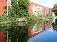 reflectie in water (bcbvisser13) Tags: reflectie muur gebouw graffiti beschildering struik water tafereel ouderijn woerden provutrecht nederland eu