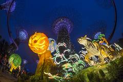 Mid-Autumn Festival @ Gardens by the Bay - Stories of the Moon (gintks) Tags: gintaygintks gintks singapore singaporetourismboard giantlanterns lanternfestival gardensbythebay yoursingapore exploresingapore landscapes lightup