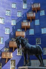 Horse (SReed99342) Tags: london uk england horse statue jacob shadthames