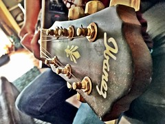 Pluck me till i die (lilkosybutterfly) Tags: guitar strings music ibanez