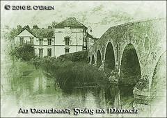 An Droichead, Grig na Manach. (mazurka666) Tags: grignamanach droichead graiguenamanagh bridge senobrien nikond3200 suirvalleyphotographicgroup riverbarrow anbhar ire ireland