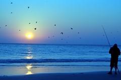 Morning Birds (CarinaMcKee) Tags: morning beach birds sunrise fishing shore wildwood octobermixmatch