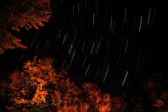 Autumn Stars (John Bradtke) Tags: autumn sky fall colors night stars star nikon long exposure trails d200 stastax