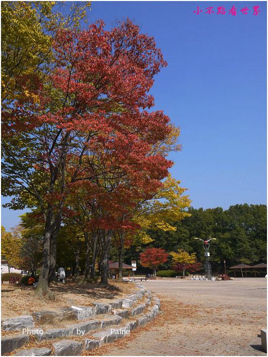 京畿道栗洞公園賞楓高空彈跳