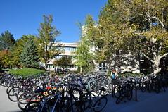 Student bikes (Great Salt Lake Images) Tags: fall utah provo brighamyounguniversity