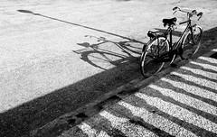 Shadows (Jordan Morganne) Tags: light shadow italy bike bicycle composition blackwhite italia pattern shadows ombra bn ombre tiles bici pillars livorno luce biancoenero bicicletta composizione biciclette leghorn pilastri nikond90 antoniogiordano