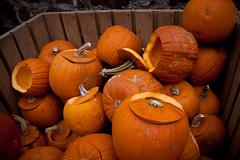 Pre-Carved Pumpins for Oktoberfest - Idstein, Germany (ChrisGoldNY) Tags: travel orange halloween germany deutschland carved europa europe european forsale eu oktoberfest viajes german repetition posters albumcover alemania bookcover vacations bookcovers jackolanterns albumcovers deutsche gridskipper idstein pumpins deutscheland jaunted chrisgoldny chrisgoldberg chrisgoldphoto
