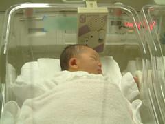 産まれた翌日の息子の写真