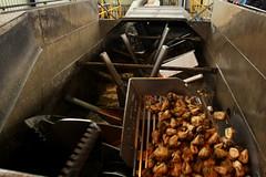 ... in der Zuckerfabrik Aarberg im Berner Seeland im Kanton Bern in der Schweiz (chrchr_75) Tags: oktober schweiz switzerland factory suisse swiss tag fabrik sugar 1210 100 christoph svizzera der tr usine 2012 sucre zucker azcar jahre sukker zucchero socker acar suissa zuckerrben suiker zuckerfabrik chrigu aarberg offenen kantonbern cukier zuckerrbe chrchr hurni chrchr75 chriguhurni  sicra oktober2012 chriguhurnibluemailch hurni121028 zuckerfabrikaarberg albumzzz201210oktober