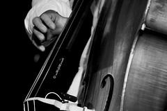 """della serie """"LE MANI NEL JAZZ"""" ... 8 / 15 (Maria Grazia Marrulli) Tags: italia puglia taranto faggiano sancrispieri eventi joniojazzfestival12 musica jazzquartetandveryspecialguestjerrybergonzi lucaalemanno estate strumentimusicali doublebass persone uomo man homme musicista mani notturno biancoenero inmovimento travel viaggio"""