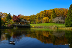 Autumn (jt893x) Tags: autumn pond nikon d800 2485mm