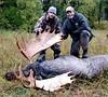 Alaska Moose and Bear Hunt - Dillingham 13