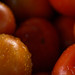 Tomate | 121023-0409-jikatu