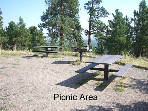 Photo - Picnic Area at the Halfway House