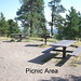 Picnic Area at the Halfway House