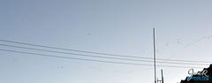 20130107_parvada (JoseR RP) Tags: mxico puebla joser angelopolis rovirola