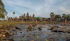 "Angkor Wat, Siem Reap, Cambodia (Warm Baked Bread) Tags: asia cambodia khmer kingdom east siem reap thom som khan southeast angkor wat say ta sap phnom penh bayon chau prohm preah banteay tonle ""east bakheng mebon ""siem reap"" ""angkor wat"" kdei ""southeast tevoda asia"" ""ta ""phnom bakheng"" ""banteay thom"" ""preah khan"" sap"" ""tonle penh"" mebon"" kdei"" prohm"" som"" ""chau tevoda"""