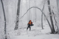 Mazalat woods (.:: Maya ::.) Tags: park people mist snow trekking central bulgaria national balkan        mazalat   mayaeye mayakarkalicheva