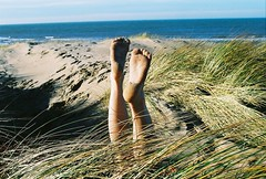 When I cannot look at your face I look at your feet (maggyvaneijk) Tags: ocean winter sea sun laura holland feet 35mm reeds dark foot sand toes toe arch shadows wind pentax scheveningen dunes north prints heel limbs