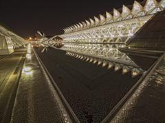 Otra vision de la ciudad de las ciencias y las artes (Marin2009) Tags: olympus nocturna ciudaddelasartesylasciencias olympuse30 marin2009