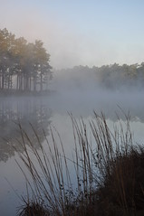Duck Pond - Eglin Range Complex, Florida (fisherbray) Tags: usa mist lake water fog nikon wasser nebel unitedstates florida airforce usaf duckpond eglin eglinafb okaloosacounty d5000 fisherbray eglinrangecomplex flickrtravelaward