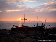 Driftwood. (*Richard Cooper *) Tags: driftwood wallasey newbrighton merseyside