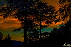 IMG_8701 (Rambonp (BUSY WITH TOUR TO EUROPE)) Tags: trees sunset red wallpaper sky orange sun india mountains nature silhouette yellow clouds canon landscape evening twilight paradise sundown crop srinagar jk dimness touristplace sukhna