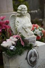 Trop jeune ! / Too young ! (patoche21) Tags: france detail graveyard statue nikon 21 burgundy tomb bourgogne tombe cimetire 18200mm ctedor d80 capturenx2 patrickbouchenard cesseysurtille