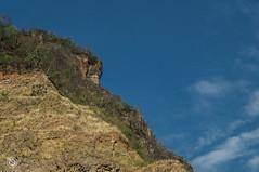 DSC03180 (Braulio Gmez) Tags: barrancadehuentitn biodiversidad caminoamascuala canyon canyonhuentitan faunayflora floresyplantas guadalajara guardianesdelabarranca huentitn ixtlahuacandelro jalisco mountainrange mxico naturaleza paisaje senderismo sierra barrancadehuentitn barranca huentitn ixtlahuacandelro mxico