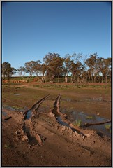 From Last Time Here (florahaggis) Tags: greenlake horsham victoria australia pc3400 westernhighway wimmera lake water drought winter mud