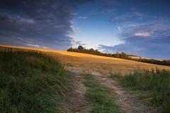 Fine Day (frantiekl) Tags: landscape sky clouds wey field hills serene harmony balance nature light summer july proda krajina bohemia