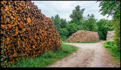 160713-9658-XM1.jpg (hopeless128) Tags: 2016 france logs eurotrip bioussac aquitainelimousinpoitoucharen aquitainelimousinpoitoucharentes fr