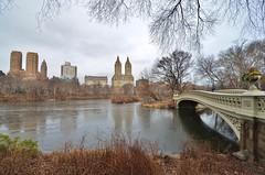 Central Park-Bow Bridge, 01.09.16 (gigi_nyc) Tags: centralpark winter nyc newyorkcity thelake bowbridge