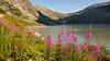 Grimsel Pass-1010230 (Matthew Weinel) Tags: berneseoberland grimselpass switzerland xpublic dmcgx80 12mm olympusm12mmf2 1640sec f56 iso200