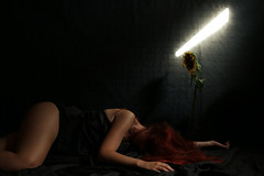 "Mourir : ""I will die when comes the end of summer"" (stefaniebst) Tags: mourir die sunflower tournesol flower fleur light redhair red black dark darkness darkart fineart fineartphotography conceptualphotography conceptual surreal selfportrait portrait portraiture self art autoportrait"