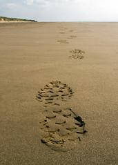 Lonley Walk (Paul Calcutt) Tags: beach sand footprint disappear coast walk alone depth field imprint focus