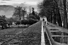 Mura di Lucca (mappett) Tags: mura di lucca leica m9 summilux 35mmf14 asph
