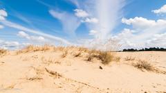Kootwijkerzand 2 (M van Oosterhout) Tags: kootwijkerzand kootwijk veluwe holland nederland netherlands duch desert woestijn zand landschap landscape nature natuur wolken clouds