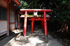 Moss Covered Sumiyoshi Shrine Torii (pokoroto) Tags: moss covered sumiyoshi shrine torii fukuoka   kyushu  japan 8   hachigatsu hazuki leafmonth 2016 28 summer august