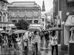 Umbrellas up on a wet day. (steve.gombocz) Tags: archecture leeds urbanstreet blacknwhite greyscale streetscene blackwhite whiteblack bwphotos bwstreetscenes bw bwstreet flickrbw bwflickr blackwhitephotos blackwhitephotography flickrstreet flickrblackwhitephotos blackwhitestreet bwstreetphotography streetlife street blackandwhite streetscenes streetphotographs bwphotography streetbw flickrblackandwhitephotos photosinblackandwhite out noiretblanc schwartzundweiss negroyblanco zwartwit neroebianco sortoghvid mustavalkoinen svarthvitt svartoghvitt svartochvitt czarnyibiaty pretoebranco noirblanc schwartzweiss negroblanco nerobianco pretobranco olympusmzuiko25mmf18lens olympususers olympusdigitalcamerausers olympusbw micro43rdsuk olympuszuikodigitalclub olympuseurope olympus olympusem5mark2 olympusm25mmf18 olympusstreet leedsbw leedsmonochrome leedsscenes leedsphotographs leedsblackwhite flickraddicts streetphotos purestreet streetspictures