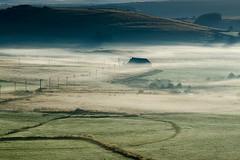 Paysage d'Aubrac, Lozère, Languedoc-Roussillon (lyli12) Tags: brume nature lozère aubrac paysage landscape campagne vert matin france nikon d7000 mist fog arbre été