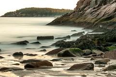 Happy 100th National Parks (rickhanger) Tags: nature nationalpark acadia acadianationalpark landscape ocean beach rickhanger
